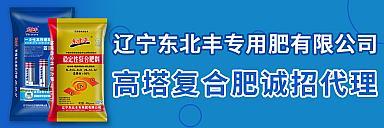 东北丰肥业系列肥料诚招代理