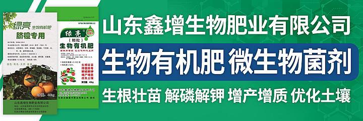 山东鑫增生物微生物菌剂生物有机肥